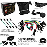 Koyto Sports 17 Pieces Set - Resistance Bands Set of 5 Long Exercise Bands and 4 Short Ankle Bands with Door Anchor, 2 Wrist Straps, 2 Ankle Straps and E-Book Manual