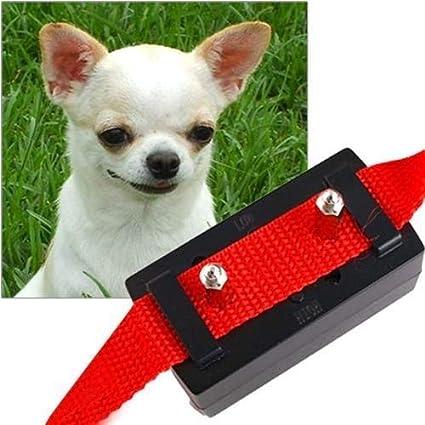 Amazoncom Zhqun Dogs Shock Training Control Collar Trainer
