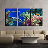 art shark - wall26 - 3 Piece Canvas Wall Art - Tropical Anthias Fish with Net Fire Corals and Shark on Red Sea Reef Underwater - Modern Home Decor Stretched and Framed Ready to Hang - 24