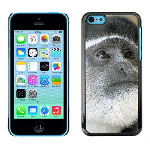 Premio Sottile Slim Cassa Custodia Case Cover Shell // F00016253 singe gris // Apple iPhone 5C