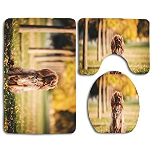MusendoCustomPrints 3PCs Bathroom Mat Set, Bath Rug with Non-Slip Rubber Backing, Contour Mat and Toilet Lid Cover - American Cocker Spaniel Lawn Brown Dog 2