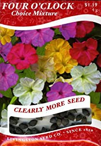 Livingston Seed Co. 6298 Four O'Clock (A) Seed Packet