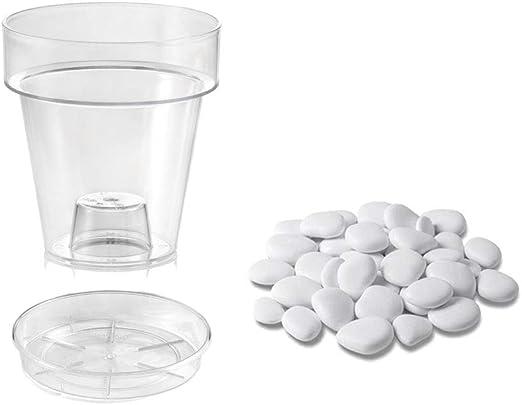 Teraplast Kit de jarrón y platillo Transparente con Piedras Blancas Decorativas Kit de diseño para Muebles: Amazon.es: Jardín