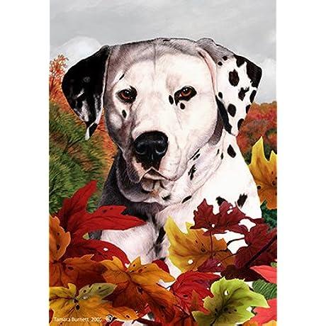 Dalmatian Tamara Burnett Fall Leaves Large Flags