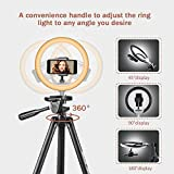 "10"" Selfie Ring Light with 50"" Extendable Tripod"