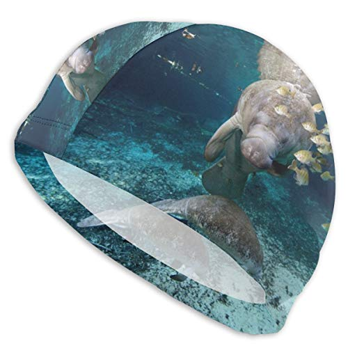 Cute Manatee and Fish Men's and Women's Swimming Caps, High Elastic Swimming Caps Can Keep Hair Clean and Breathable, Suitable for Long Hair, Short Hair and Swimming Cap