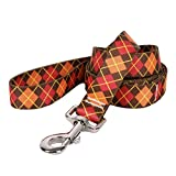 Yellow Dog Design Argyle Fall Dog Leash 3/4'' Wide And 5' (60'') Long, Small/Medium
