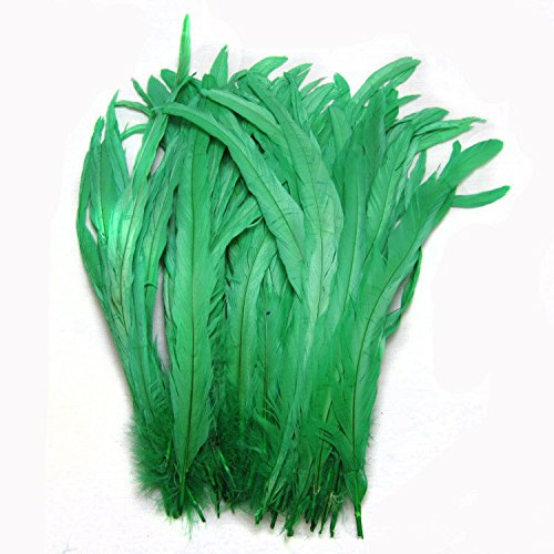 ADAMAI Natural Bleached Dyed 30-35cm Rooster Tail Feather Hats Clothes Costume Decoration Pack of 50 (Green)