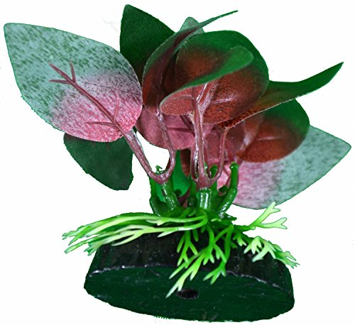 Best Live Amp Fake Plants For Betta Fish Tank 2019 Buyer S