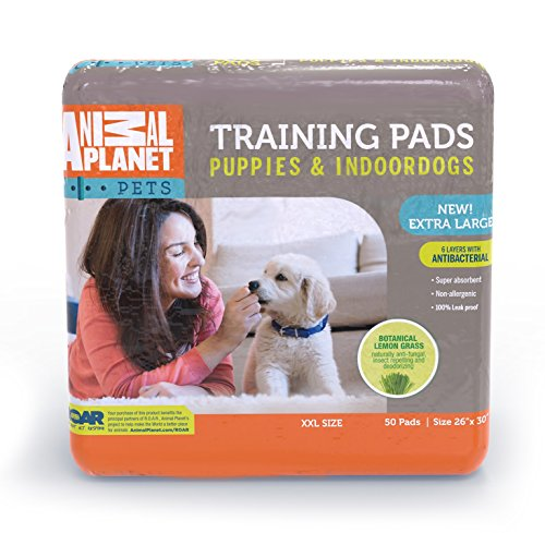 Animal Planet 23408 Indoor Puppy XL Training Pads, 26