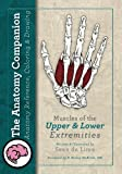 The Anatomy Companion: Muscles of the Upper and Lower Extremities (The Anatomy Companion Series) (Volume 1)