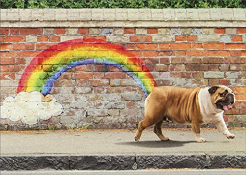 Birthday Bulldog (Avanti Dog Rainbow Funny Bulldog Birthday Card)
