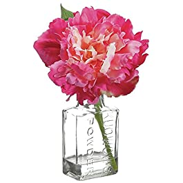 Artificial Peony Floral in Glass Vase Fuchsia Polysilk – 8″H