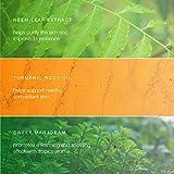 Himalaya Botanique Neem & Turmeric Natural Face...