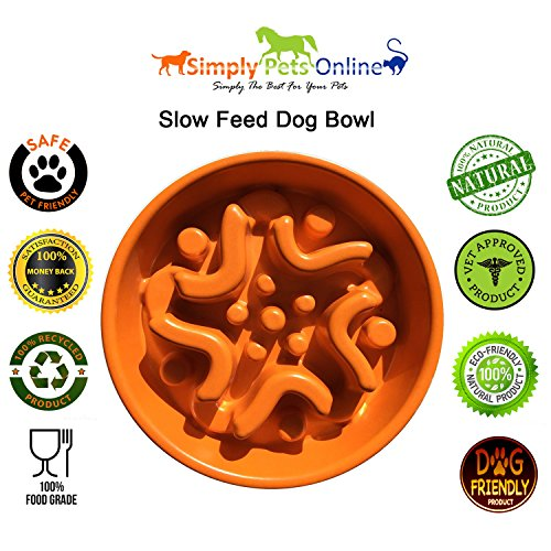 Simply-Pets-Online-A-Maze-In-A-Bowl-Eco-friendly-Bamboo-Fiber-Slow-Feed-Dog-Bowl-118-x-118-x-27-Inches