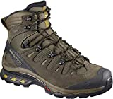 Best Backpacking Boots - Salomon Men's Quest 4D 3 GTX Backpacking Boots Review
