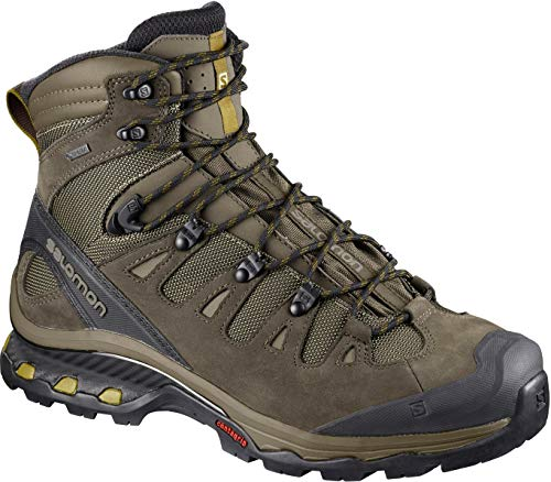 Salomon Men's Quest 4D 3 GTX Backpacking Boots, Wren/Bungee Cord/Green Sulphur, 10 M US