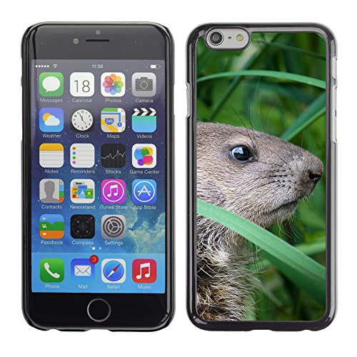 Premio Sottile Slim Cassa Custodia Case Cover Shell // F00015861 Groundhog // Apple iPhone 6 6S 6G PLUS 5.5""