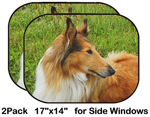 (Liili Car Sun Shade for Side Rear Window Blocks UV Ray Sunlight Heat - Protect Baby and Pet - 2 Pack Image ID: 18794069 Portrait of Sable and White Long haired Rough Collie Dog)