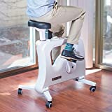 300 pro indoor cycle - FLEXISPOT Desk Bike Home Office Under desk Exercise Bike Indoor Cycle