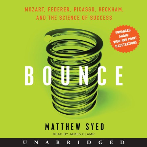 Bargain Audio Book - Bounce