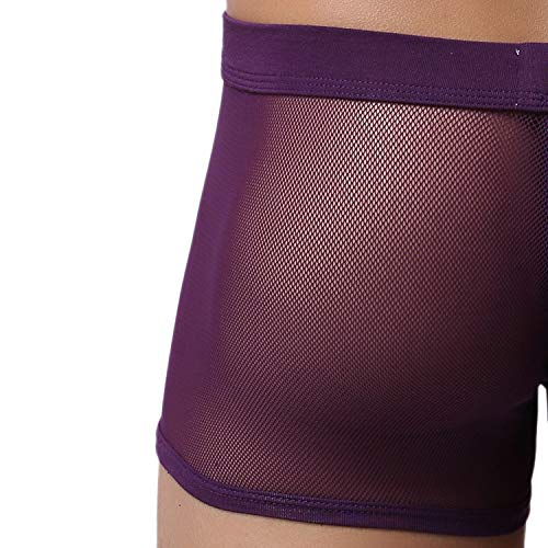 (Men's Boxers Soft Underwear Mesh Breathable Gay Low Rise Boxer Briefs(36Purple,XXL))