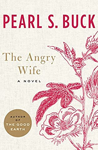 book cover of The Angry Wife