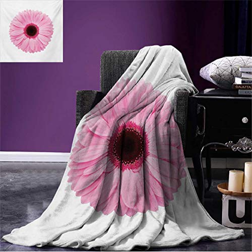 ite Summer Blanket Fresh Gerber Daisy Garden Plants of Spring Growth Single Flower Image Beach Pale Pink White W60 x L50 inch ()