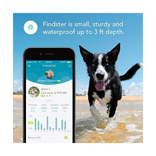 Findster Duo+ Pet Tracker Free of Monthly Fees - GPS Tracking Collar for Dogs and Cats & Pet Activity Monitor 6