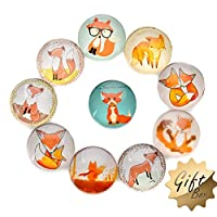 FF Elaine 10 Pcs Fridge Magnets Crystal Glass Housewarming Home Decorations Gift (Fox)