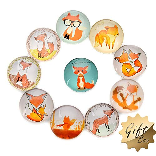 FF Elaine 10 Pcs Fridge Magnets Crystal Glass Housewarming Home Decorations Gift (Fox) (Fox Glass)