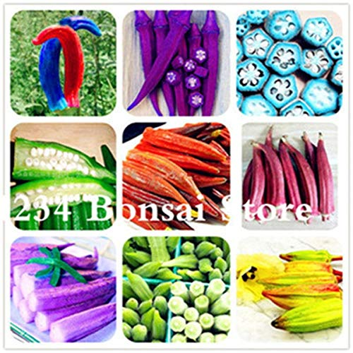 hot Sale! 100pcs Okra Seeds, Okra Planting, Organic Heirloom Vegetable Fruit, Seeds Flower Plant for Home Garden Easy to Grow: Mixed