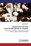 Expression of Two Insecticidal Genes in Cotton, Allah Bakhsh and Tayyab Husnain, 3844389202