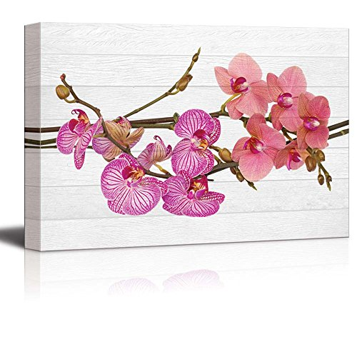 wall26 - Pink and Coral Orchid Flowers on a Branch Over White Wood Panels - Zen - Canvas Art Home Decor - 12x18 inches