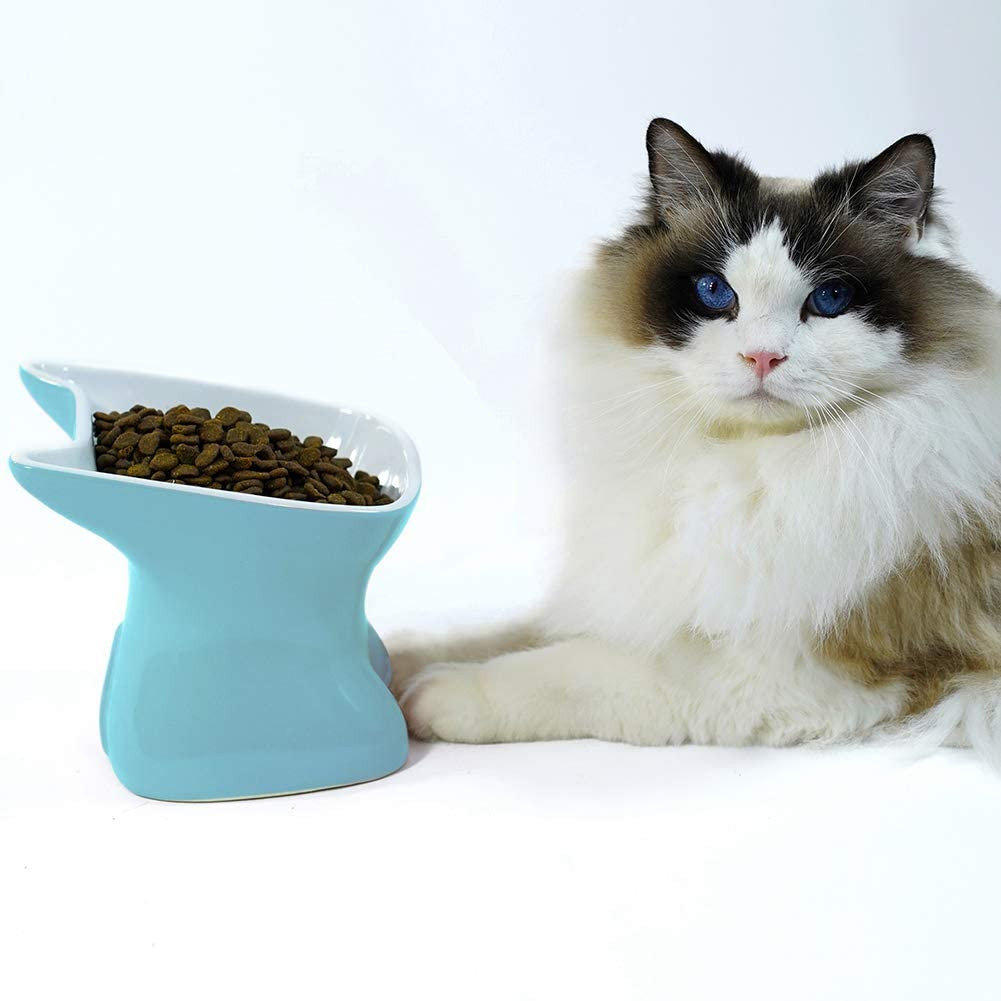 SkyAppetite Elevated Cat and Dog Ceramic Feeding Bowl, Raised Food Bowl, 15°Tilted Pet Food Dishes and Bowls Anti Vomiting(Blue)