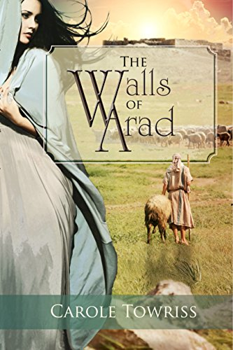 The Walls of Arad by Carole Towriss