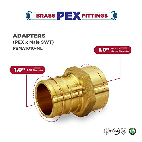 Everflow PSMA1010-NL 1 Inch x 1 Inch Lead Free Brass Adapter PEX X MALE SWEAT, Brass Construction, Compatible w/ PEX Piping, Low-Cost plumbing Connection, Durability & Reliability, Easy to Install