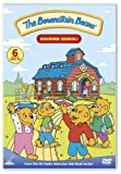 The Berenstain Bears - Discover School!