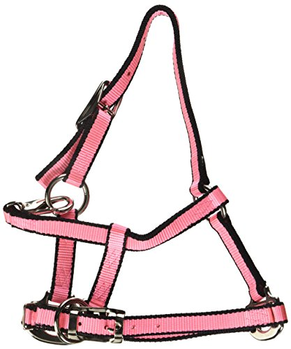 (Hamilton Adjustable Quality Foal Halter with Snap for Mini Horse, 3/4