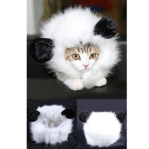 Pet Wig with Ears for Dogs or Cats Pet Cosplay Lion Mane Wig Christmas Costumes Festival Party Fancy Dress Up (Joker Cat Costume)