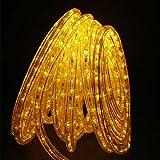 Direct-Lighting GRL-50-YEL Yellow 50ft LED Rope Light