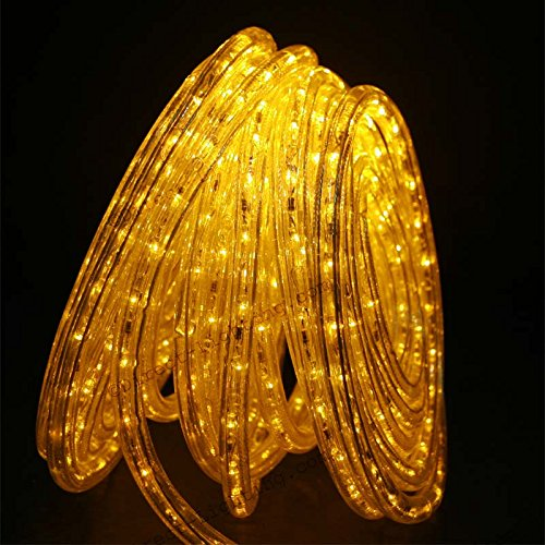 Wattage Of Led Rope Lights in US - 8