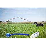 Tether Tug Rope Pulling Dog Toy, Plus Pup Meister Tennis Ball Thrower and Clicker