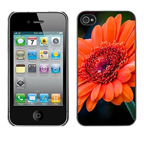 Premio Sottile Slim Cassa Custodia Case Cover Shell // F00020800 Tangerine fleur // Apple iPhone 4 4S 4G