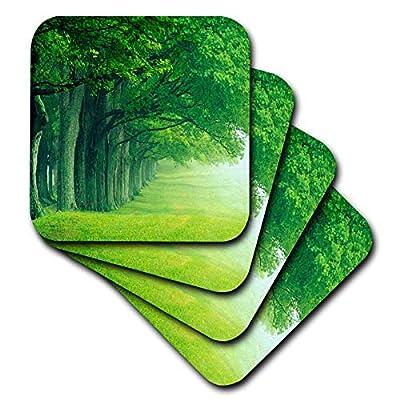 3dRose Florene Worlds Exotic Spots - Kentucky Green Trees - Coasters