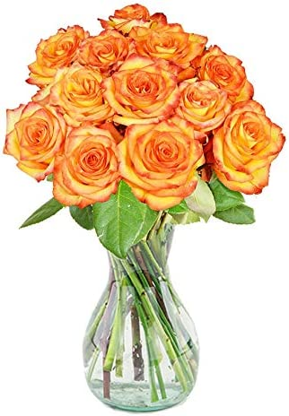 Delivery by Monday, May 10th Dozen Yellow Roses by Arabella Bouquets