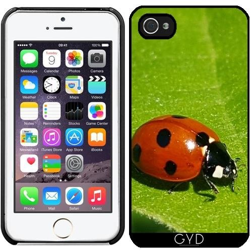 Coque pour Iphone 5/5S - Coccinelle Coccinelle Animaux Insectes by WonderfulDreamPicture
