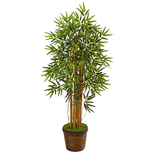 Nearly Natural 4.5' Bamboo Artificial Tree in Coiled Rope Planter, Green by Nearly Natural