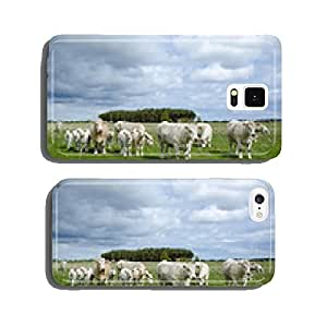 Cattle at spring cell phone cover case Samsung S6
