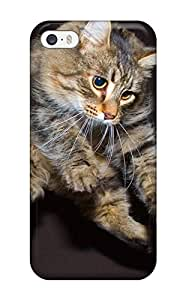 Best 7322360K79388409 Tpu Phone Case With Fashionable Look For Iphone 5/5s - Cat Sitting Down